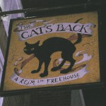 the catsback sign