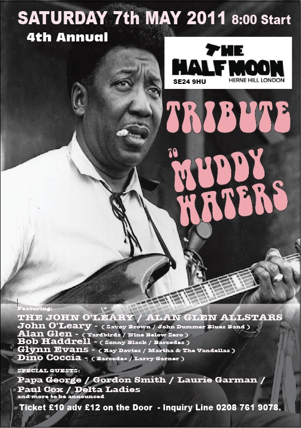 Muddy Waters Tribute at the Half Moon Herne Hill